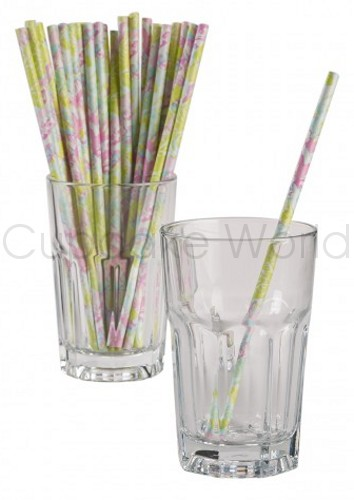 ISABEL FLORAL PINK GREEN ROBERT GORDON RETRO PAPER STRAWS 24PK